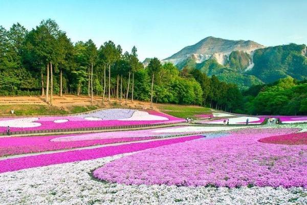 20 cảnh đẹp luôn thu hút khách du lịch ở Nhật Bản